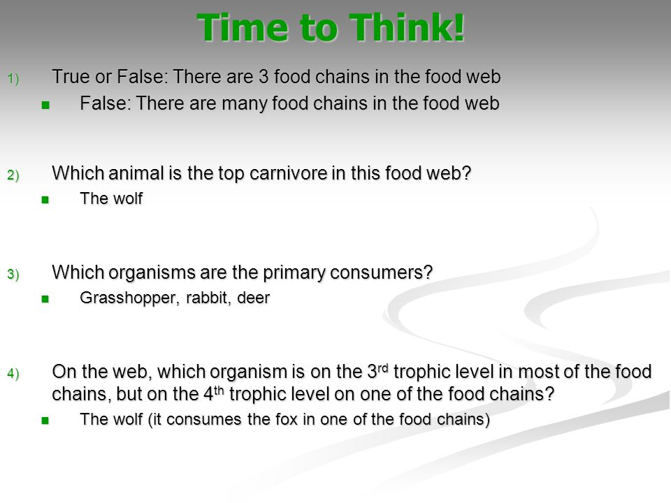 1) True or False: There are 3 food chains in the food web False: There are many food chains in the food web False: There are many food chains in the f