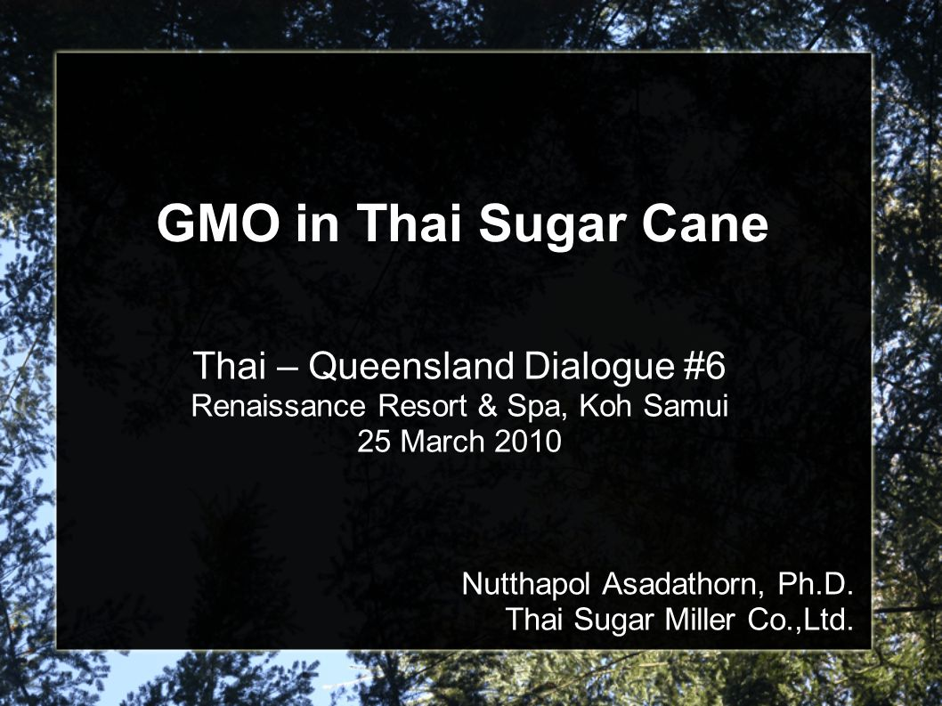 GMO in Thai Sugar Cane Thai – Queensland Dialogue #6 Renaissance Resort & Spa, Koh Samui 25 March 2010 Nutthapol Asadathorn, Ph.D.