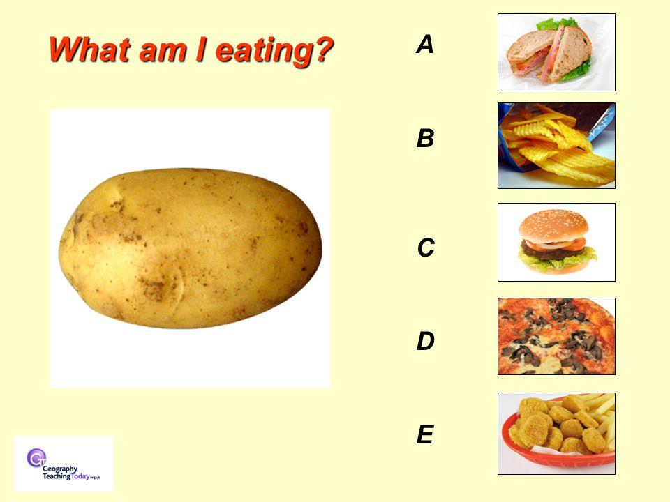 AB C D EAB C D E What am I eating