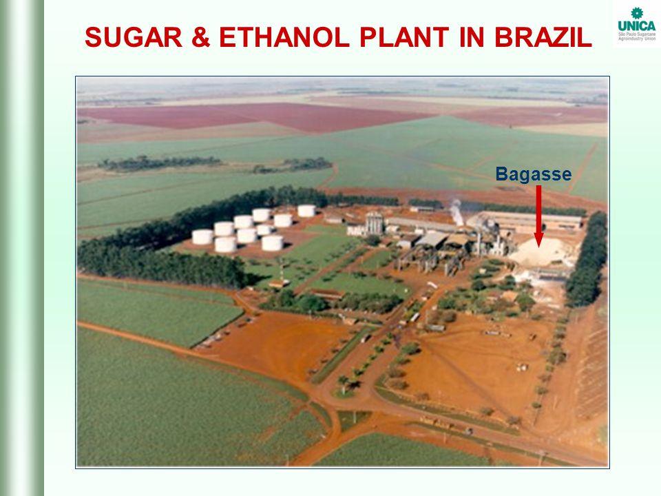 SUGAR & ETHANOL PLANT IN BRAZIL Bagasse