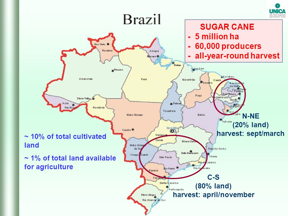 ~ 10% of total cultivated land ~ 1% of total land available for agriculture SUGAR CANE - 5 million ha - 60,000 producers - all-year-round harvest C-S (80% land) harvest: april/november N-NE (20% land) harvest: sept/march