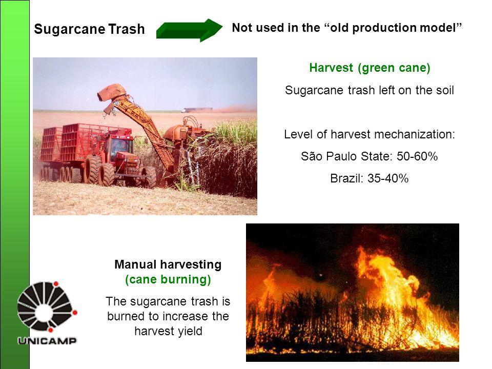 RECOVERY OF SUGARCANE TRASH AFTER HARVEST Harvesting: sugarcane trash scattered field Accumulation of sugarcane trash Packing: to increase density for transport Sugarcane trash bales Transport NEW PRODUCTION MODEL USE OF SUGARCANE TRASH
