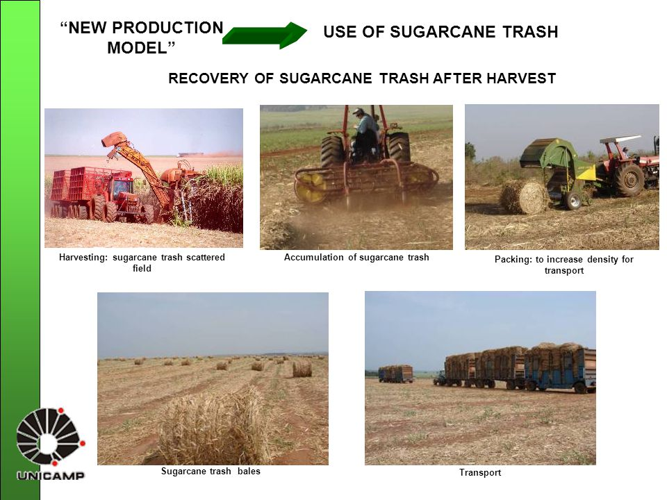 RECOVERY OF SUGARCANE TRASH AFTER HARVEST Harvesting: sugarcane trash scattered field Accumulation of sugarcane trash Packing: to increase density for transport Sugarcane trash bales Transport NEW PRODUCTION MODEL USE OF SUGARCANE TRASH