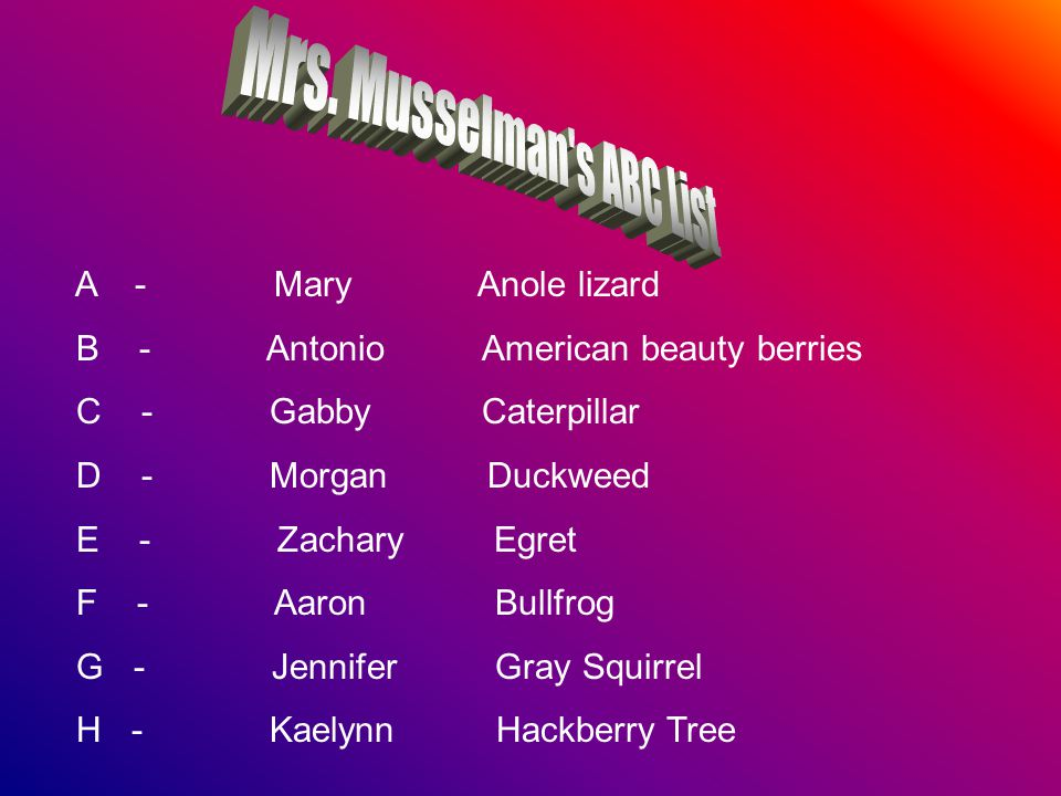A - Mary Anole lizard B - Antonio American beauty berries C - Gabby Caterpillar D - Morgan Duckweed E - Zachary Egret F - Aaron Bullfrog G - Jennifer Gray Squirrel H - Kaelynn Hackberry Tree