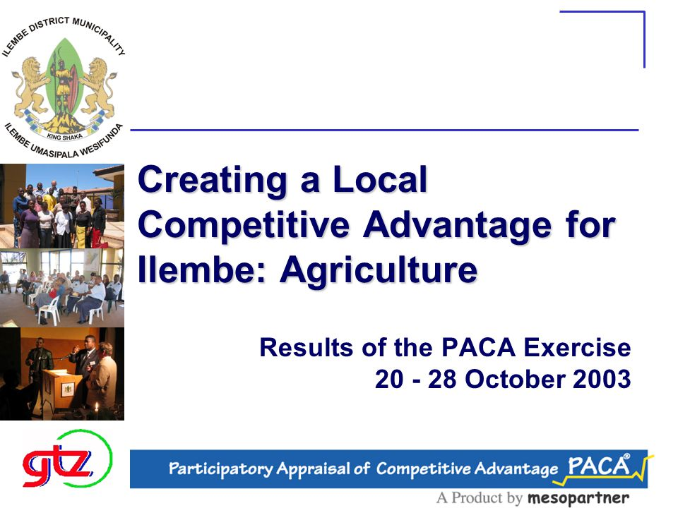 Creating a Local Competitive Advantage for Ilembe: Agriculture Results of the PACA Exercise 20 - 28 October 2003