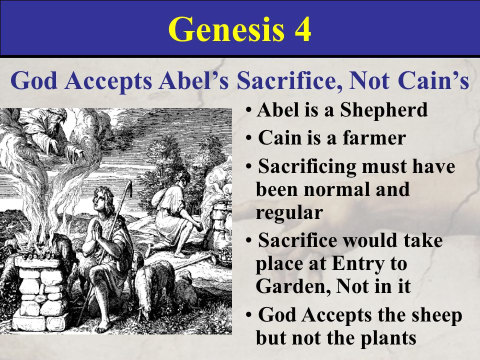 Genesis 4 God Accepts Abel's Sacrifice, Not Cain's Abel is a Shepherd Cain is a farmer Sacrificing must have been normal and regular Sacrifice would take place at Entry to Garden, Not in it God Accepts the sheep but not the plants
