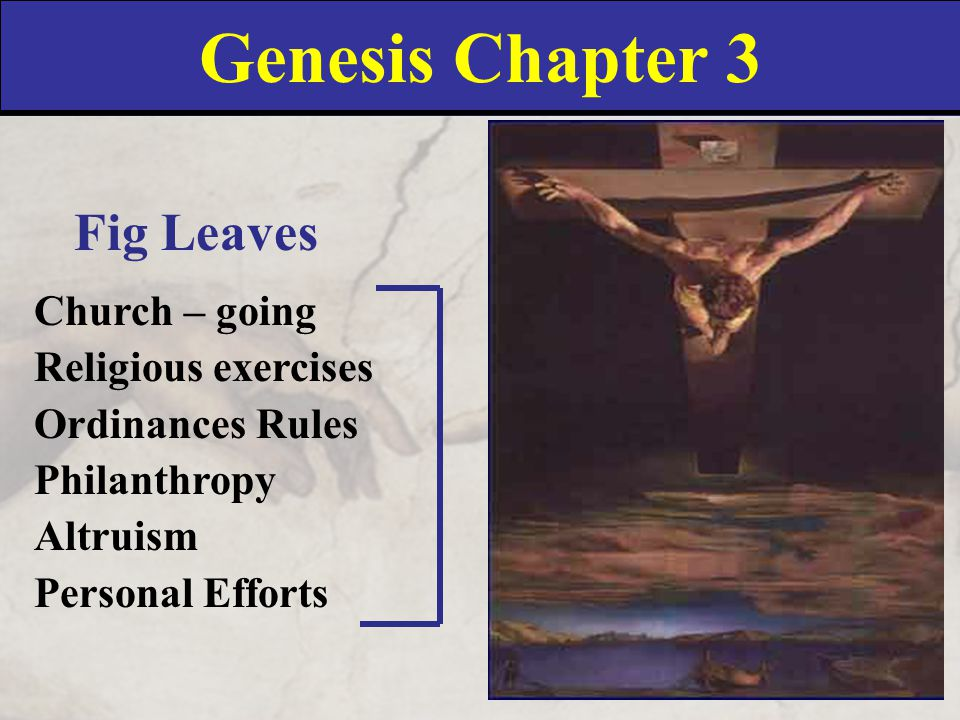 Genesis 4:1-2 1 And Adam knew Eve his wife; and she conceived, and bare Cain, and said, I have gotten a man from the LORD.