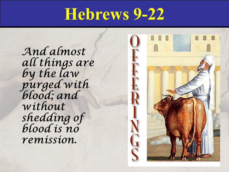 Hebrews 9-22 And almost all things are by the law purged with blood; and without shedding of blood is no remission.