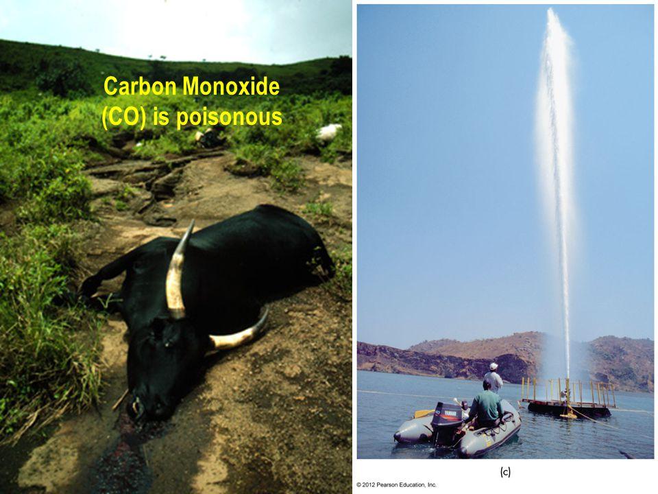 Carbon Monoxide (CO) is poisonous