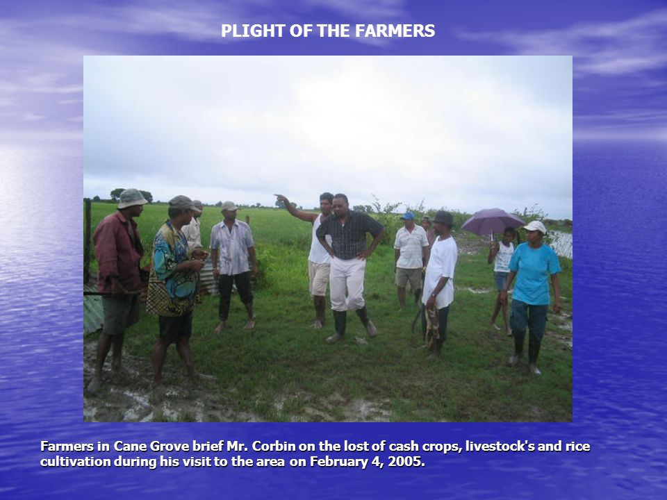 Farmers in Cane Grove brief Mr. Corbin on the lost of cash crops, livestock's and rice cultivation during his visit to the area on February 4, 2005. P