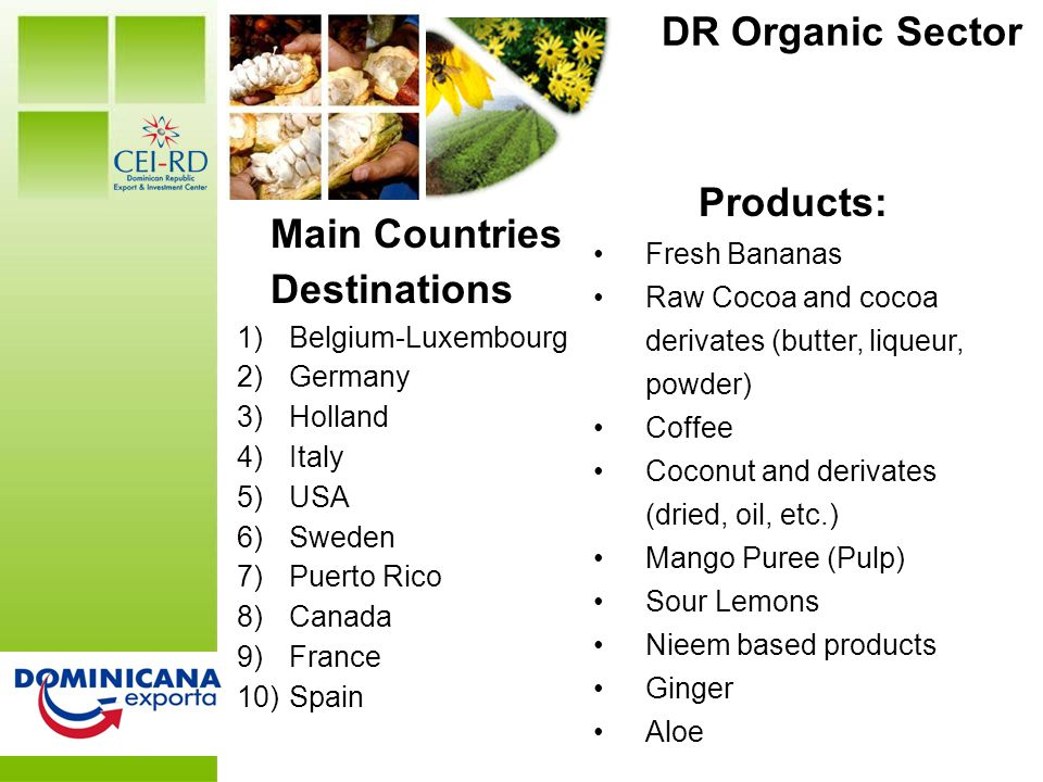 DR at a Glance DR Organic Sector Main Countries Destinations 1)Belgium-Luxembourg 2)Germany 3)Holland 4)Italy 5)USA 6)Sweden 7)Puerto Rico 8)Canada 9)France 10)Spain Products: Fresh Bananas Raw Cocoa and cocoa derivates (butter, liqueur, powder) Coffee Coconut and derivates (dried, oil, etc.) Mango Puree (Pulp) Sour Lemons Nieem based products Ginger Aloe
