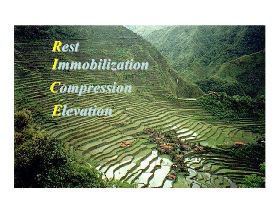 Rest Immobilization Compression Elevation