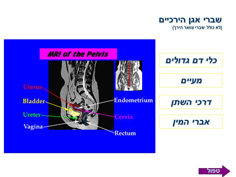 שברי אגן הירכיים (לא כולל שברי צוואר הירך) כלי דם גדולים מעיים דרכי השתן אברי המין טפול