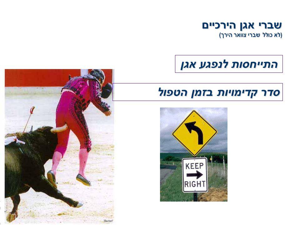 שברי אגן הירכיים (לא כולל שברי צוואר הירך) התייחסות לנפגע אגן סדר קדימויות בזמן הטפול