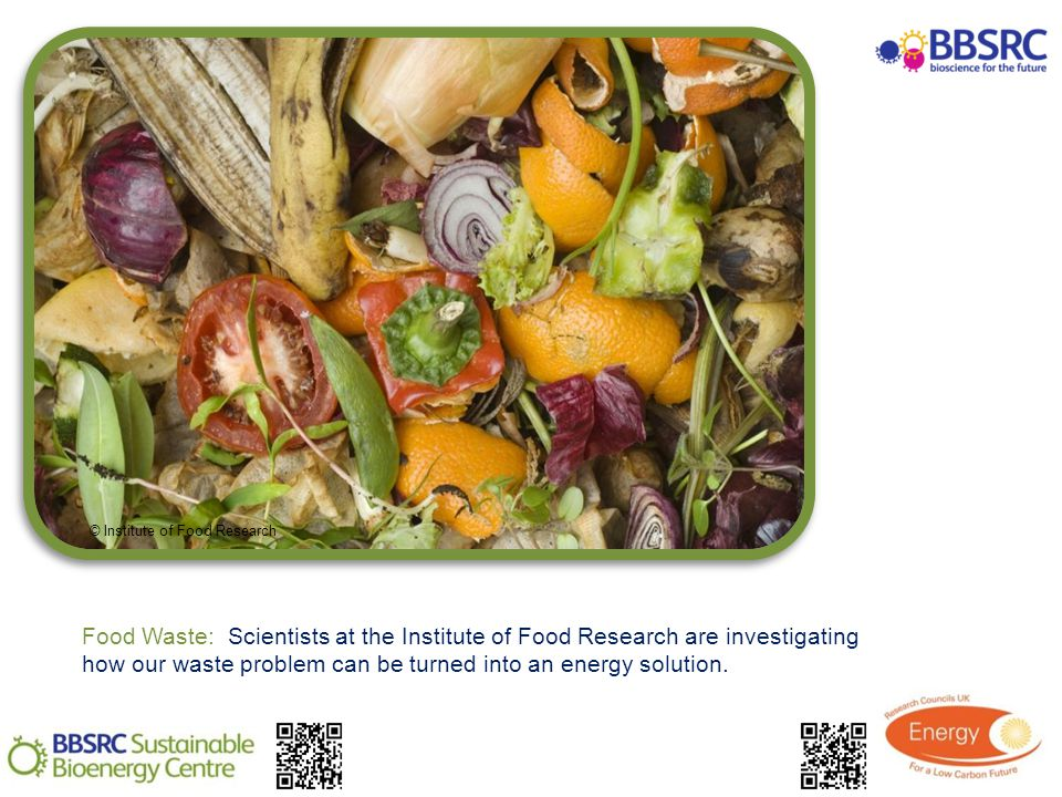 Food Waste: Scientists at the Institute of Food Research are investigating how our waste problem can be turned into an energy solution.