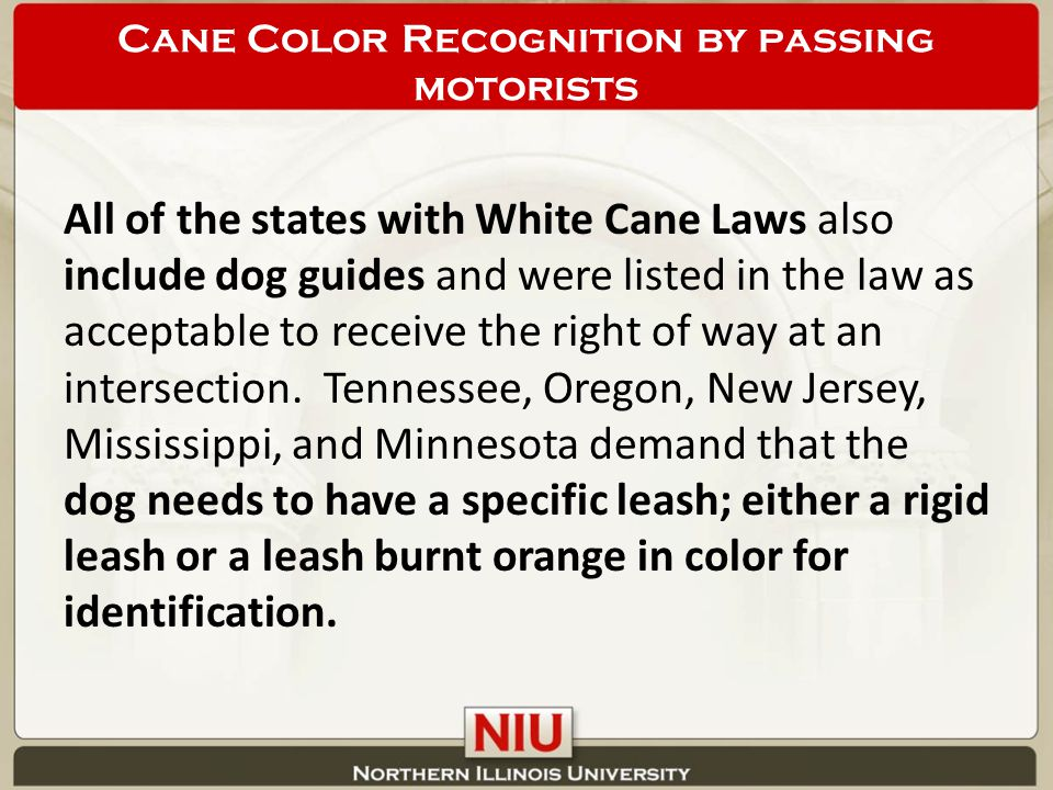 All of the states with White Cane Laws also include dog guides and were listed in the law as acceptable to receive the right of way at an intersection.