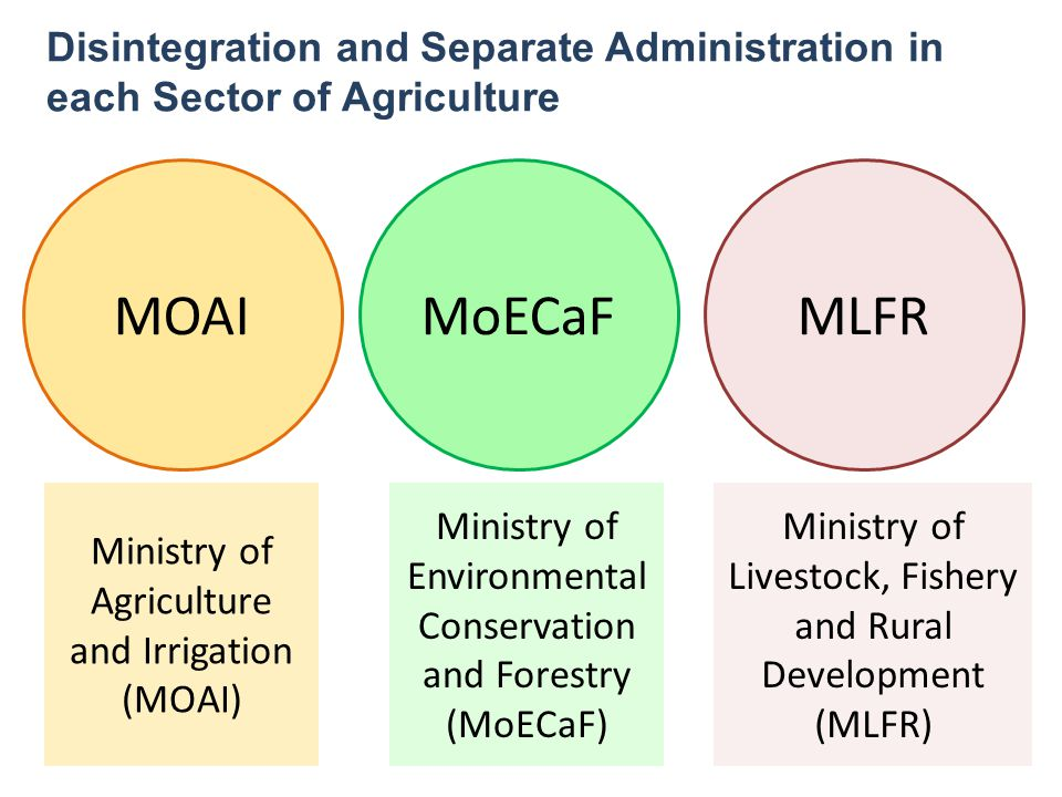 Disintegration and Separate Administration in each Sector of Agriculture MOAIMoECaFMLFR Ministry of Agriculture and Irrigation (MOAI) Ministry of Envi