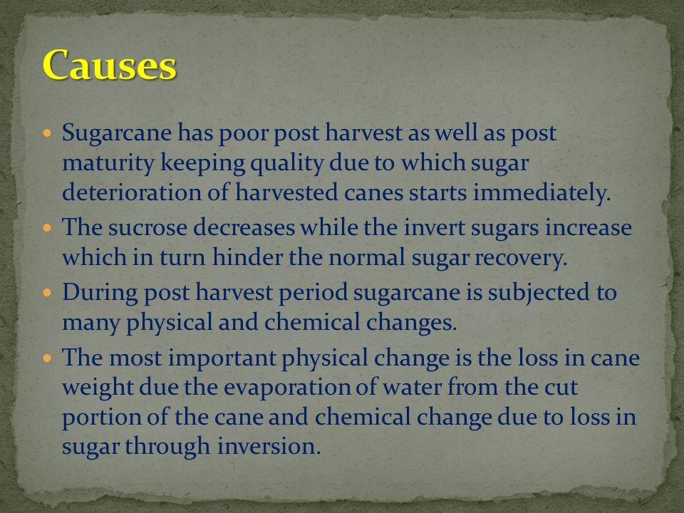 Sugarcane has poor post harvest as well as post maturity keeping quality due to which sugar deterioration of harvested canes starts immediately. The s