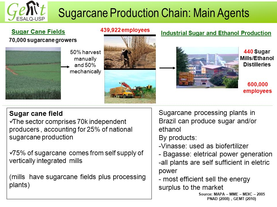 Sugarcane Production Chain: Main Agents Industrial Sugar and Ethanol Production Sugar Cane Fields 70,000 sugarcane growers 440 Sugar Mills/Ethanol Distilleries Source: MAPA – MME – MDIC – 2005 PNAD (2008), GEMT (2010) 439,922 employees 600,000 employees Sugar cane field The sector comprises 70k independent producers, accounting for 25% of national sugarcane production 75% of sugarcane comes from self supply of vertically integrated mills ( mills have sugarcane fields plus processing plants) 50% harvest manually and 50% mechanically Sugarcane processing plants in Brazil can produce sugar and/or ethanol By products: -Vinasse: used as biofertilizer - Bagasse: eletrical power generation -all plants are self sufficient in eletric power - most efficient sell the energy surplus to the market