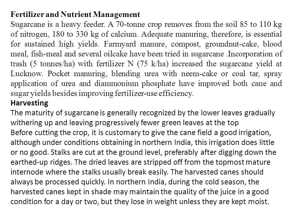 Fertilizer and Nutrient Management Sugarcane is a heavy feeder.