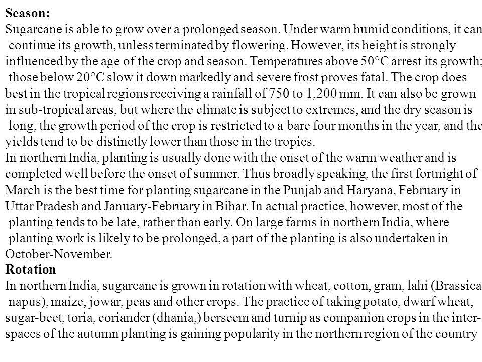 Season: Sugarcane is able to grow over a prolonged season.