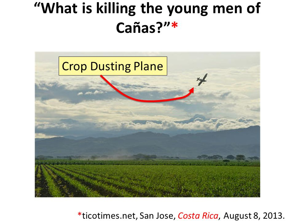 What is killing the young men of Cañas? * *ticotimes.net, San Jose, Costa Rica, August 8, 2013.