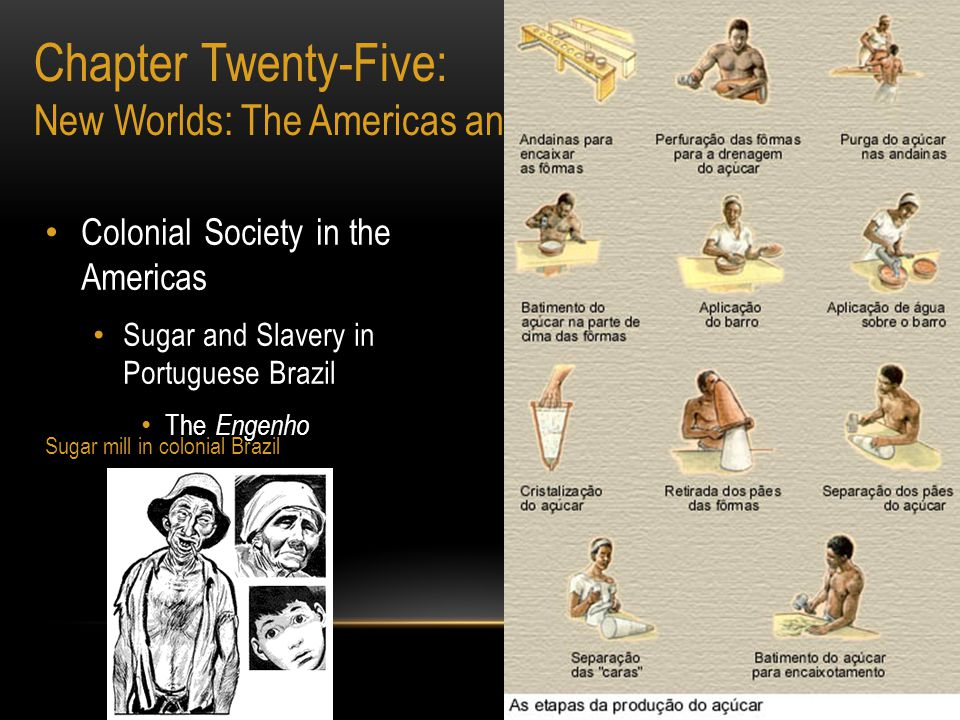 Colonial Society in the Americas Sugar and Slavery in Portuguese Brazil The Engenho Copyright ©2002 by the McGraw- Hill Companies, Inc. Chapter Twenty
