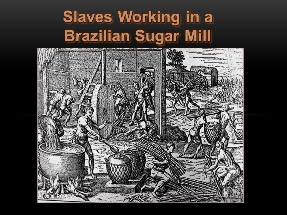 Slaves Working in a Brazilian Sugar Mill