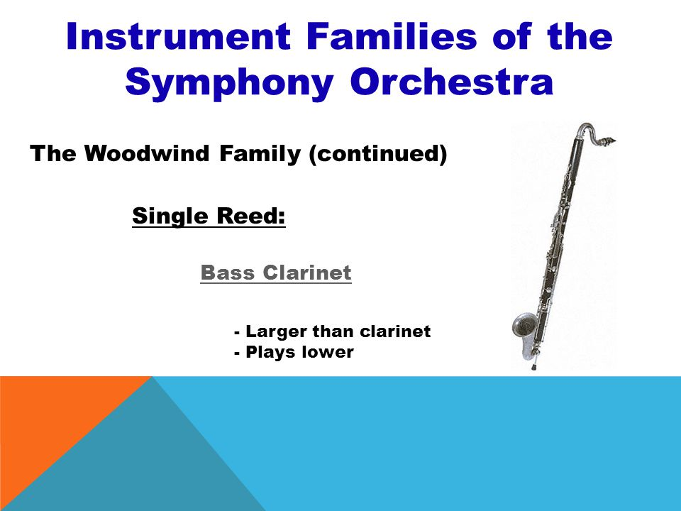 Instrument Families of the Symphony Orchestra The Woodwind Family (continued) Single Reed Clarinet - Made of wood - Bell-shaped end - Sound produced b