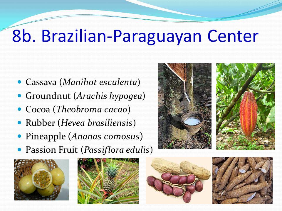 Distribution and origin of plants