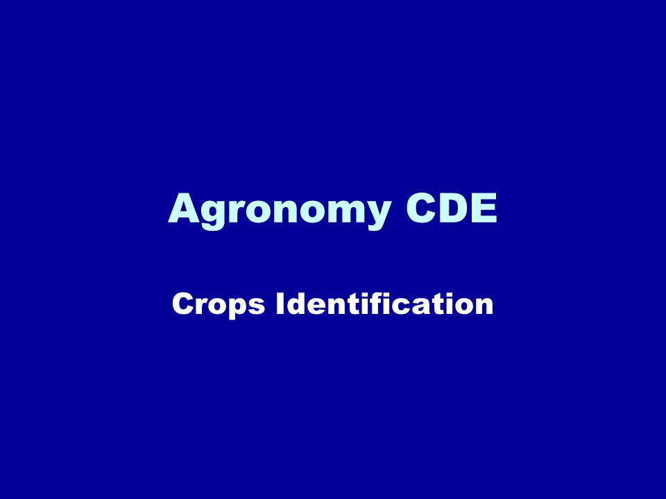 Agronomy CDE Crops Identification