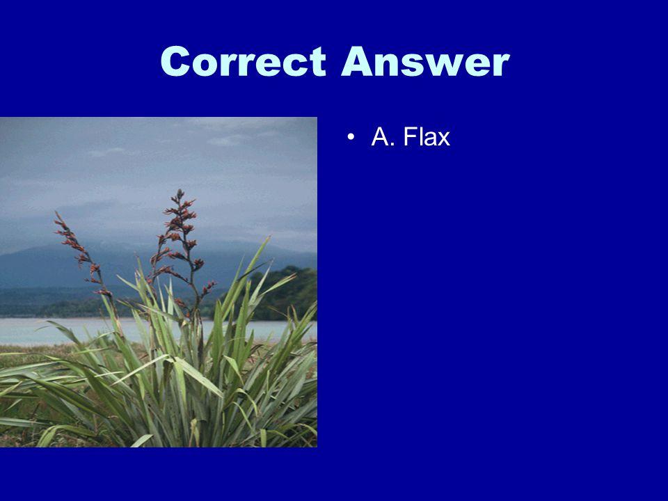 Correct Answer A. Flax