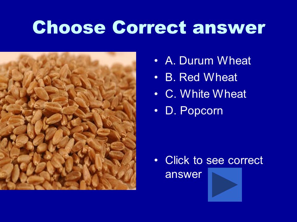 Choose Correct answer A.Durum Wheat B. Red Wheat C.