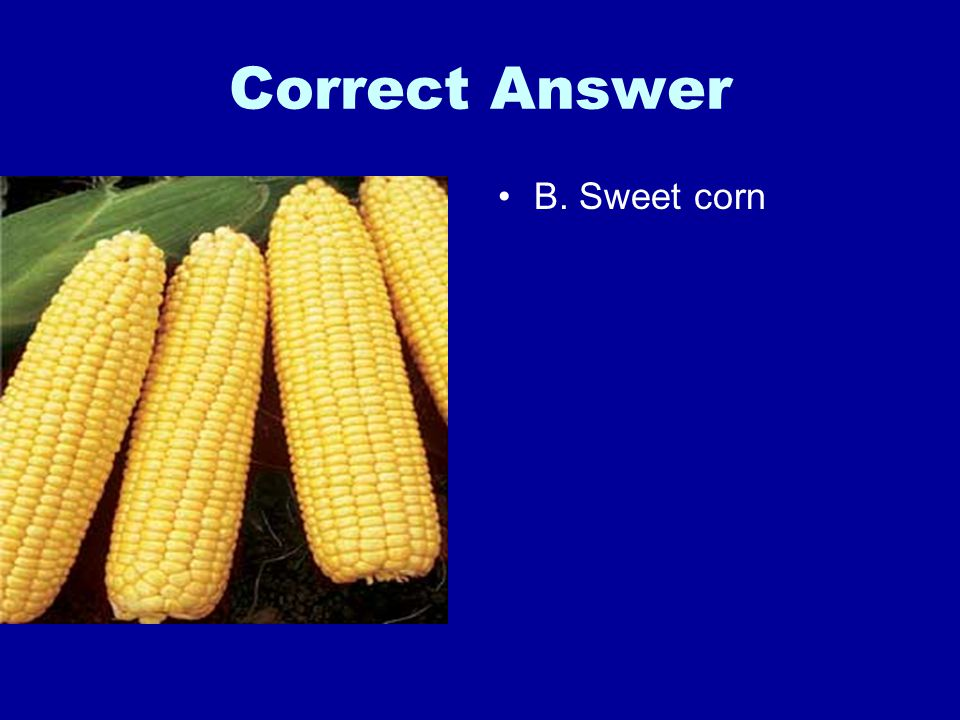 Correct Answer B. Sweet corn