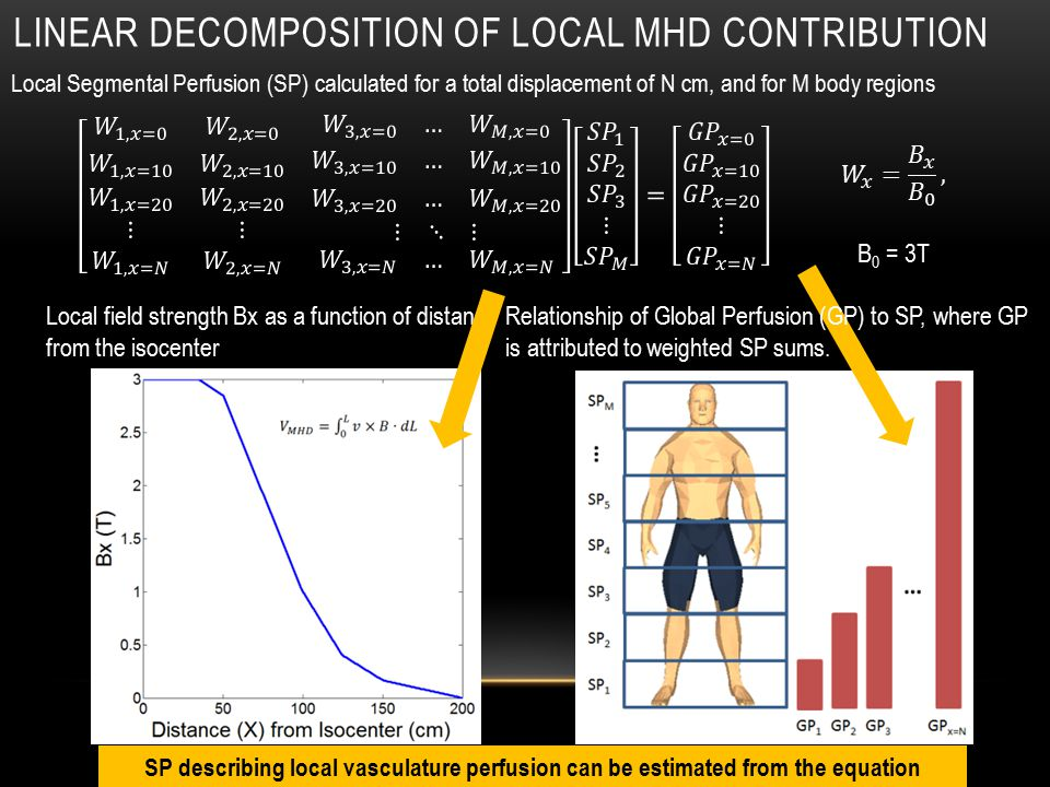 LINEAR DECOMPOSITION OF LOCAL MHD CONTRIBUTION Local Segmental Perfusion (SP) calculated for a total displacement of N cm, and for M body regions Local field strength Bx as a function of distance from the isocenter Relationship of Global Perfusion (GP) to SP, where GP is attributed to weighted SP sums.