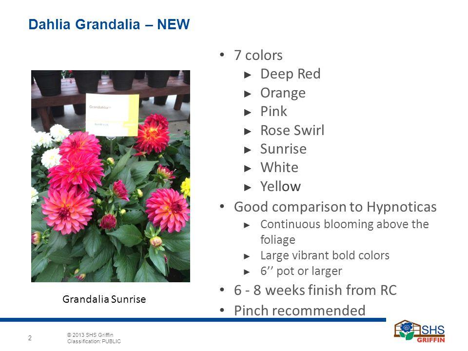 © 2013 SHS Griffin Classification: PUBLIC 2 Dahlia Grandalia – NEW 7 colors ► Deep Red ► Orange ► Pink ► Rose Swirl ► Sunrise ► White ► Yellow Good co