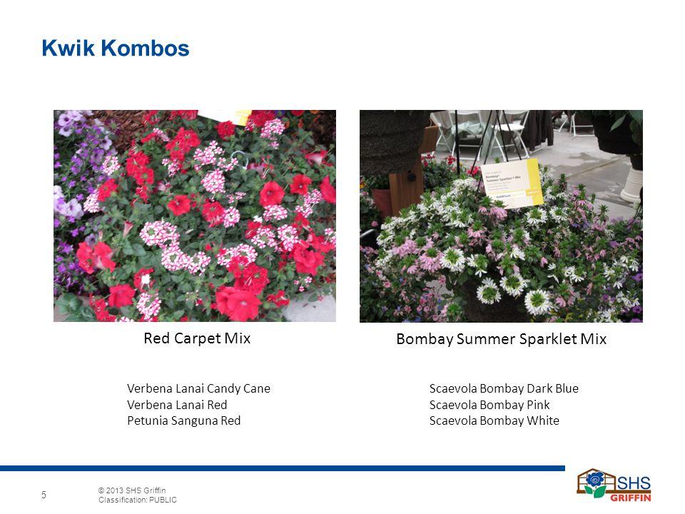 © 2013 SHS Griffin Classification: PUBLIC 5 Kwik Kombos Bombay Summer Sparklet Mix Red Carpet Mix Scaevola Bombay Dark Blue Scaevola Bombay Pink Scaev
