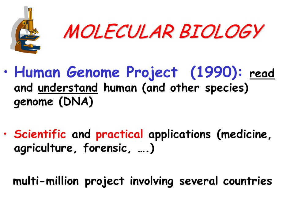 MOLECULAR BIOLOGY Human Genome Project (1990): read and understand human (and other species) genome (DNA) Scientific and practical applications (medicine, agriculture, forensic, ….) multi-million project involving several countries