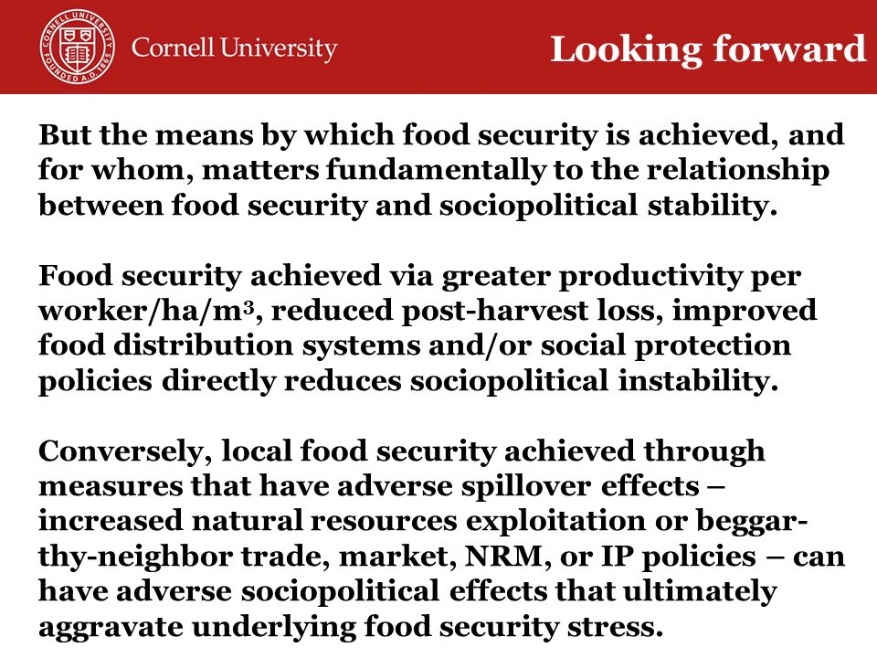But the means by which food security is achieved, and for whom, matters fundamentally to the relationship between food security and sociopolitical stability.