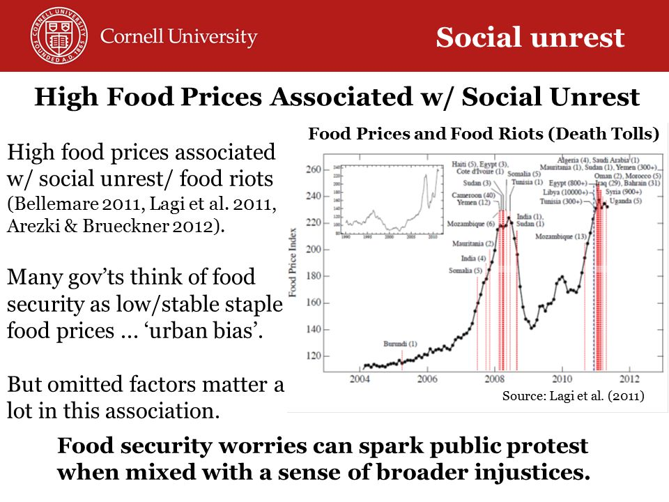 High Food Prices Associated w/ Social Unrest High food prices associated w/ social unrest/ food riots (Bellemare 2011, Lagi et al.