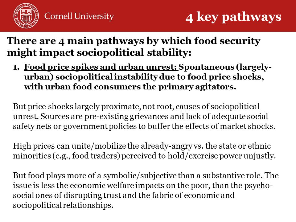 There are 4 main pathways by which food security might impact sociopolitical stability: 1.Food price spikes and urban unrest: Spontaneous (largely- urban) sociopolitical instability due to food price shocks, with urban food consumers the primary agitators.