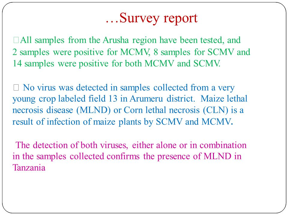 …Survey report  All samples from the Arusha region have been tested, and 2 samples were positive for MCMV, 8 samples for SCMV and 14 samples were positive for both MCMV and SCMV.
