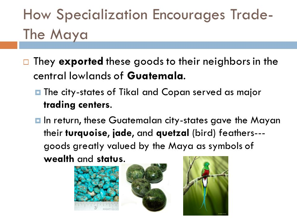How Specialization Encourages Trade- The Maya  They exported these goods to their neighbors in the central lowlands of Guatemala.  The city-states o