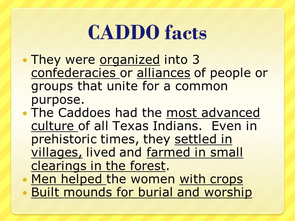 CADDO facts They were organized into 3 confederacies or alliances of people or groups that unite for a common purpose. The Caddoes had the most advanc