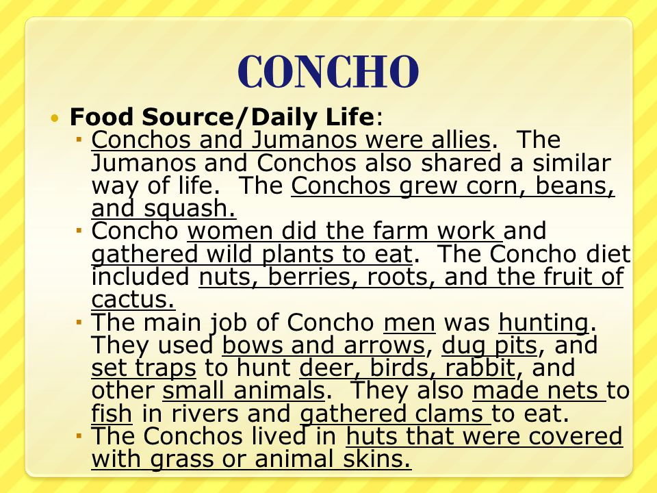 CONCHO Food Source/Daily Life:  Conchos and Jumanos were allies. The Jumanos and Conchos also shared a similar way of life. The Conchos grew corn, be