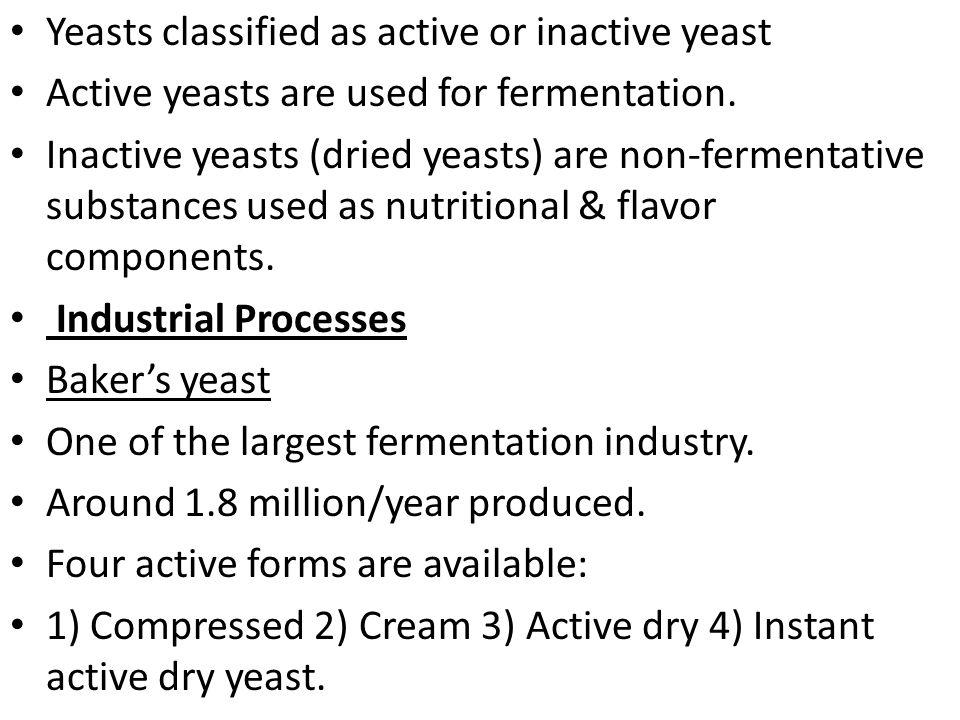 Major uses of yeasts