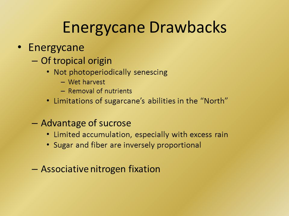 Energycane Drawbacks Energycane – Of tropical origin Not photoperiodically senescing – Wet harvest – Removal of nutrients Limitations of sugarcane's abilities in the North – Advantage of sucrose Limited accumulation, especially with excess rain Sugar and fiber are inversely proportional – Associative nitrogen fixation