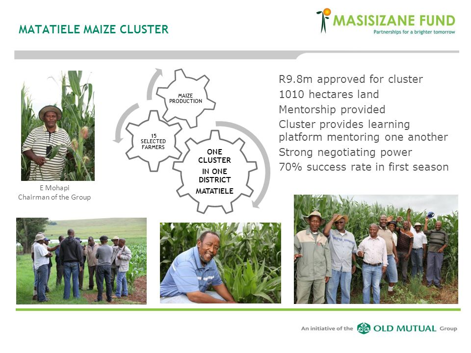 MATATIELE MAIZE CLUSTER ONE CLUSTER IN ONE DISTRICT MATATIELE 15 SELECTED FARMERS MAIZE PRODUCTION E Mohapi Chairman of the Group R9.8m approved for c