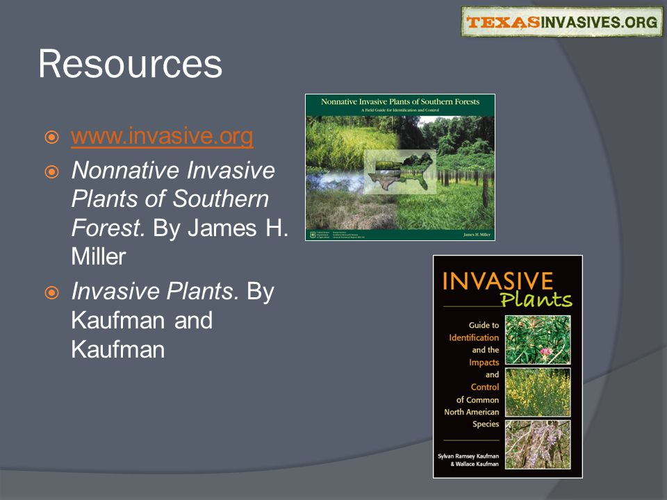 Resources  www.invasive.org www.invasive.org  Nonnative Invasive Plants of Southern Forest.
