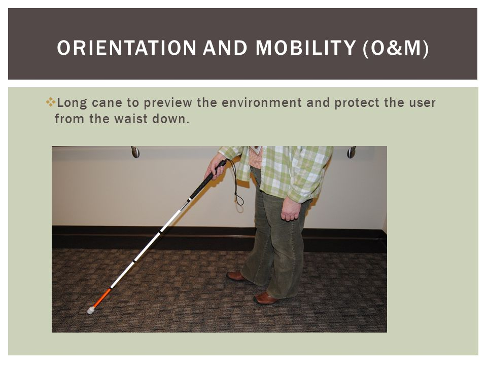  Long cane to preview the environment and protect the user from the waist down.